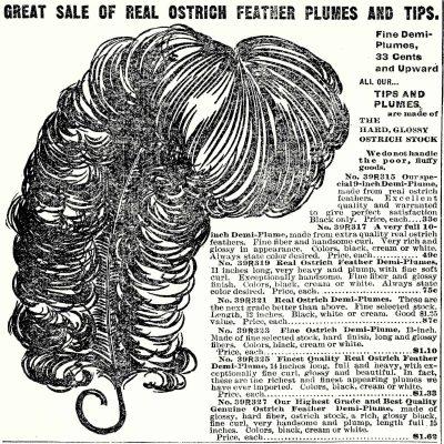 Vintage Ostrich Feather