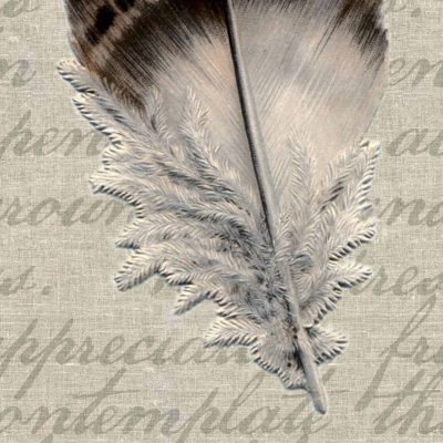 Feather Mixed Media Art